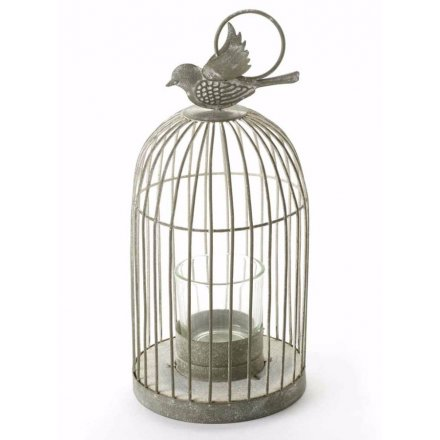 Antiqued T-Lite Cage with Bird Medium
