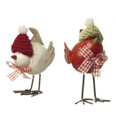 Jolly festive birds dressed for chilly weather