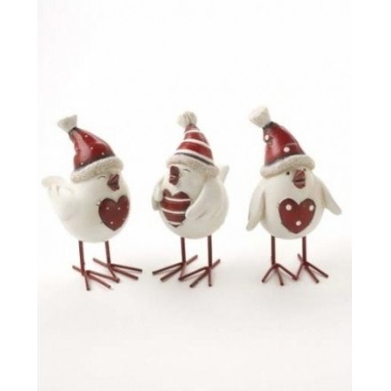 Funny Birds With Hats & Hearts
