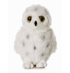 Flopsie is a beautiful snowy owl with exceptional detail.