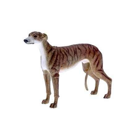 Leonardo Collection - Brindle Greyhound