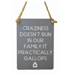 Small metal sign with humorous family text and cute house illustration. Finished with curved edges and jute string to ha