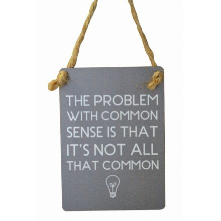 Common Sense Mini Grey Metal Sign