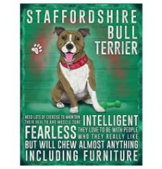 Hanging metal sign with colourful Staffy image and script