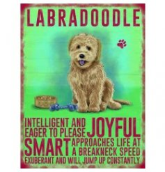 Hanging metal sign with colourful Labradoodle image and script