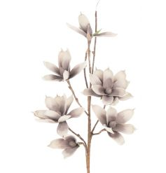 Chic Magnolia flower branch for decorative use