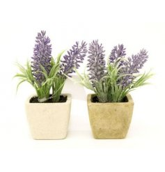 Small artificial lavender pots in an assortment of 2
