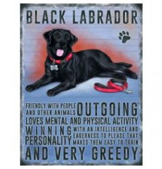 Mini metal dangler sign with Black Labrador image and description