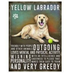 Mini metal dangler sign with Yellow Labrador image and description