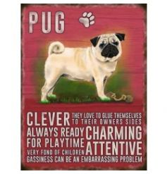 Mini metal dangler sign with Pug image and description
