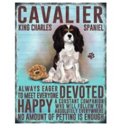 Mini metal dangler sign with Cavalier King Charles image and description