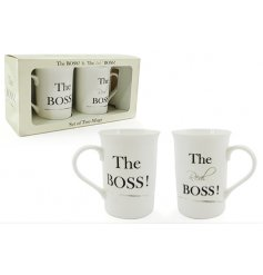 Set of 2 china mugs in matching gift box with humorous script