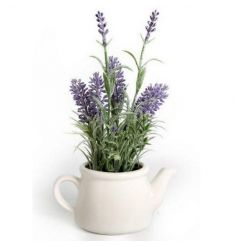 An ornamental lavender plant in a ceramic teapot