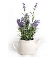 An ornamental lavender plant in a ceramic teapot