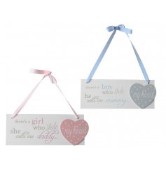 An assortment of two pink and blue baby plaques