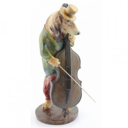 Dog Musician Bass
