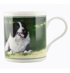 A cachet china mug with border collie print