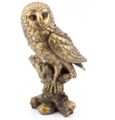 A stunning owl figure with a bronze finish and fine quality detail.
