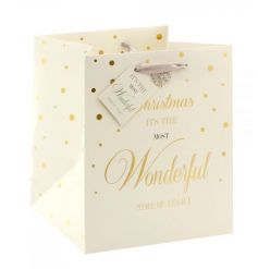 A stunning mad dots design gift bag with festive slogan and a pretty diamante snowflake detail.