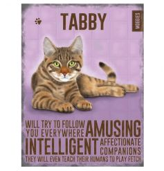 Tabby cat image and traits on a vintage metal sign