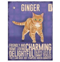 Ginger cat image and traits on a vintage metal sign