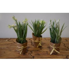 An assortment of 4 frosted flower pots, with brown paper bag tied with raffia bows.