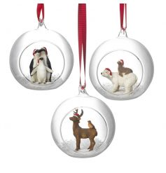 beautiful assorted hanging glass globes with small animal figurines inside