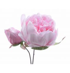 A pretty silk peony flower. Perfect for popping into one of our decorative bottles or vases.