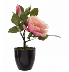 A gorgeous artificial rose plant set within a ceramic black pot.