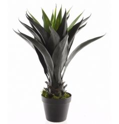 A fine quality artificial agave plant set within a classic black planter.