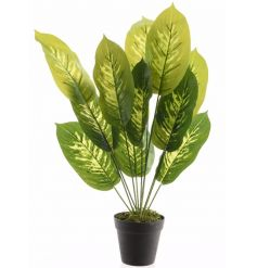 Create that wow factor with this fine quality artificial evergreen plant.
