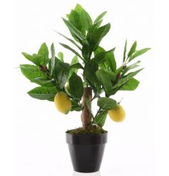 A fresh and vibrant artificial lemon tree with pot. A lovely addition to any home.
