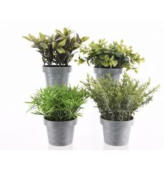 An assortment of 4 artificial plants, each is set within a classic grey plant pot. A stylish home accessory.