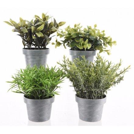 Artificial Plants In Pot, 4a 13cm