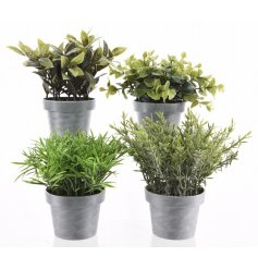 A mix of 4 artificial plants set within grey plant pots. A contemporary touch to the home.