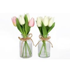 An assortment of 2 tulip arrangements in glass vases. Each is finished with a jute bow.