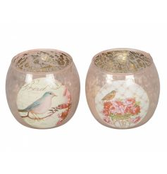 An assortment of 2 vintage inspired glass t-light holder/decorative pot with a pink bird illustration.