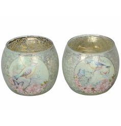 An assortment of 2 whimsical t-light holders/decorative pots each with a vintage inspired bird design.