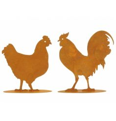 An assortment of 2 metal chicken and cockerel ornaments with a rustic rusty finish.