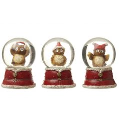 An assortment of 3 festive owl snow globes each with a festive winter hat.