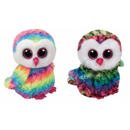 A random mix of Owen the Owl TY beanie boo toys