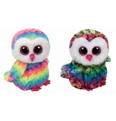 A mix of psychedelic Owen the Owl TY beanie boos