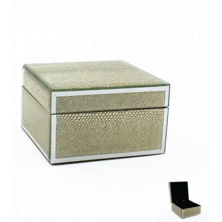 Mirror Snakeskin Trinket Box