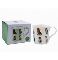 A fine quality illustrated cat mug with various breeds.