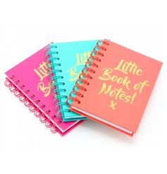 A mix of three colourful and stylish A6 notebooks each with a gold 'Little Book Of Notes' slogan.