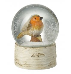A beautiful winter robin within a traditional snow globe