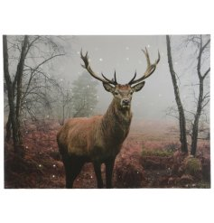 Light Up Stag Canvas Extra Large 80cm