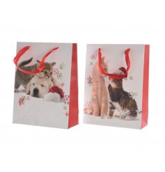 An assortment of 2 large kitten / puppy christmas gift bags