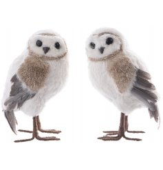 A mix of 2 beautiful foam owls with feathers. Complete with chic gold and grey wings.