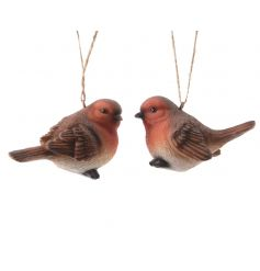 A mix of 2 hanging robin decorations.